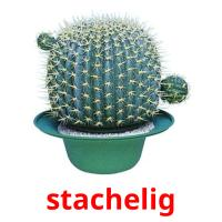 stachelig picture flashcards