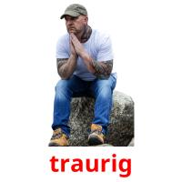 traurig picture flashcards