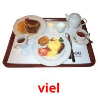 viel picture flashcards