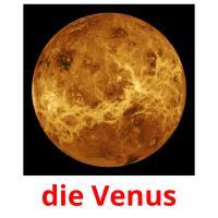 die Venus picture flashcards