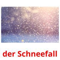 der Schneefall picture flashcards