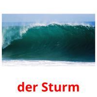 der Sturm picture flashcards