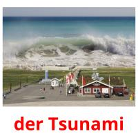 der Tsunami picture flashcards