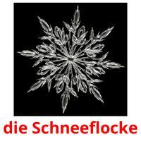 die Schneeflocke picture flashcards