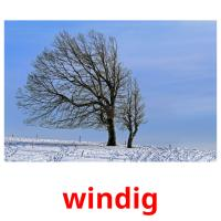 windig picture flashcards