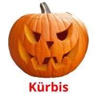 Kürbis picture flashcards