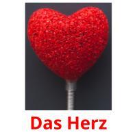 Das Herz picture flashcards