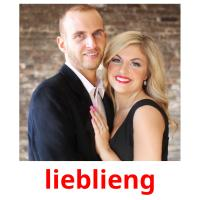 lieblieng picture flashcards