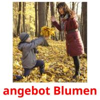 angebot Blumen picture flashcards