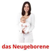 das Neugeborene picture flashcards