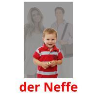 der Neffe picture flashcards