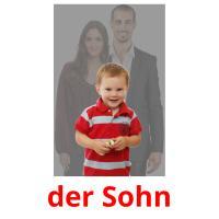 der Sohn picture flashcards
