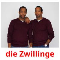die Zwillinge picture flashcards