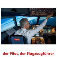der Pilot, der Flugzeugführer picture flashcards
