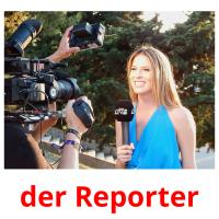 der Reporter picture flashcards