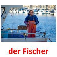 der Fischer picture flashcards