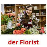 der Florist picture flashcards