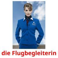 die Flugbegleiterin picture flashcards