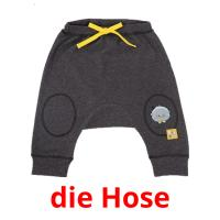 die Hose picture flashcards