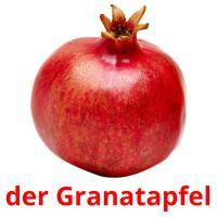 der Granatapfel picture flashcards