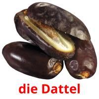 die Dattel picture flashcards
