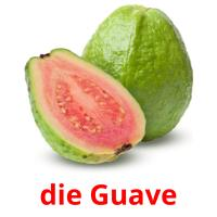 die Guave picture flashcards