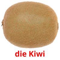 die Kiwi picture flashcards
