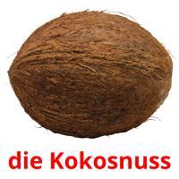 die Kokosnuss picture flashcards