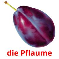 die Pflaume picture flashcards