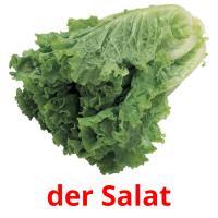 der Salat picture flashcards