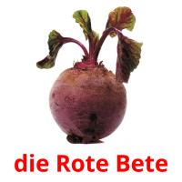 die Rote Bete picture flashcards