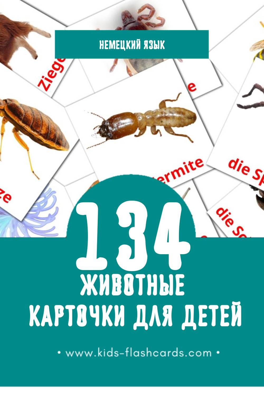 """""""Tiere"""" - Визуальный Немецком Словарь для Малышей (128 картинок)"""