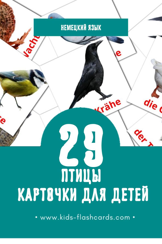 """""""Die Vögel"""" - Визуальный Немецком Словарь для Малышей (28 картинок)"""