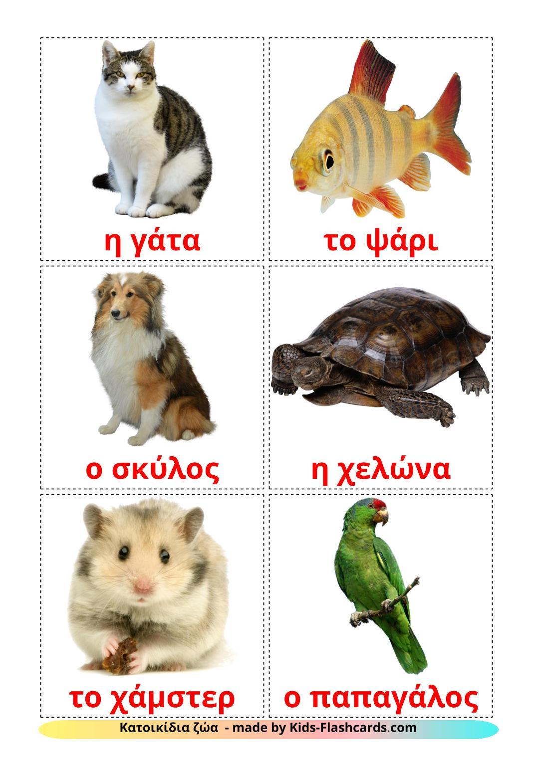 Domestic animals - 10 Free Printable greek Flashcards