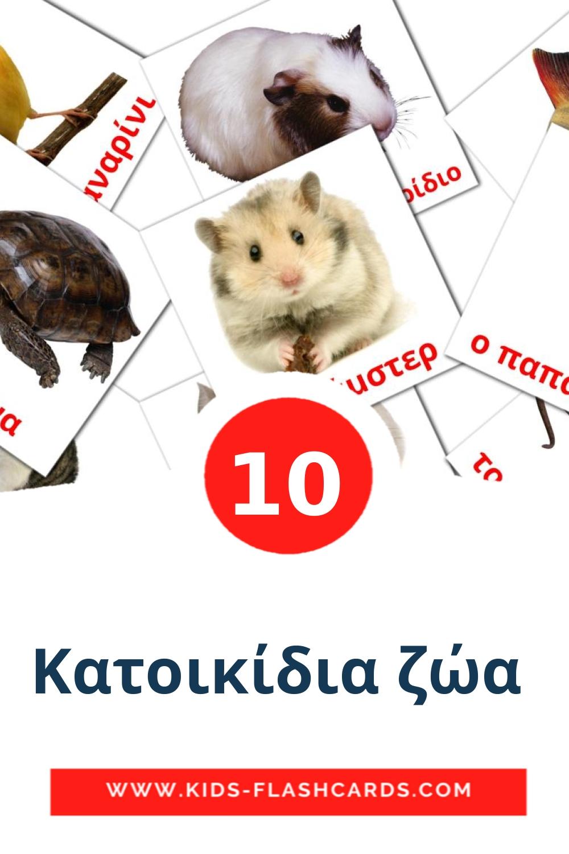 10 Κατοικίδια ζώα  Picture Cards for Kindergarden in greek