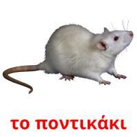το ποντικάκι picture flashcards