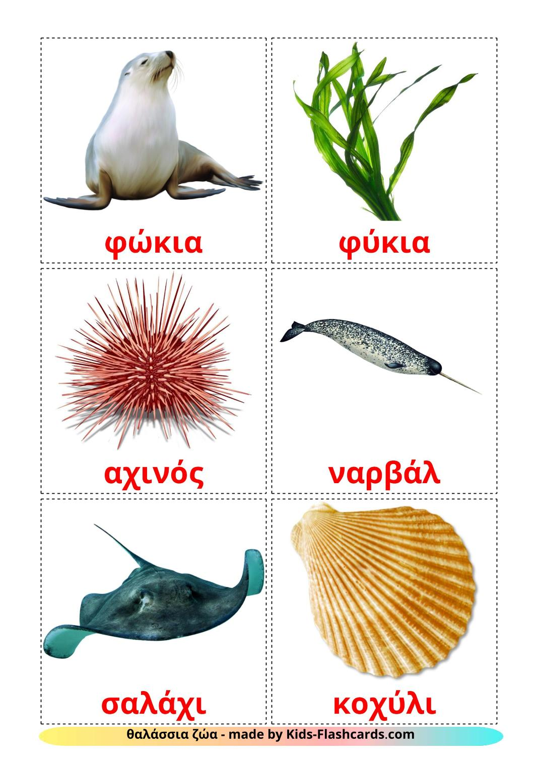 Sea animals - 29 Free Printable greek Flashcards