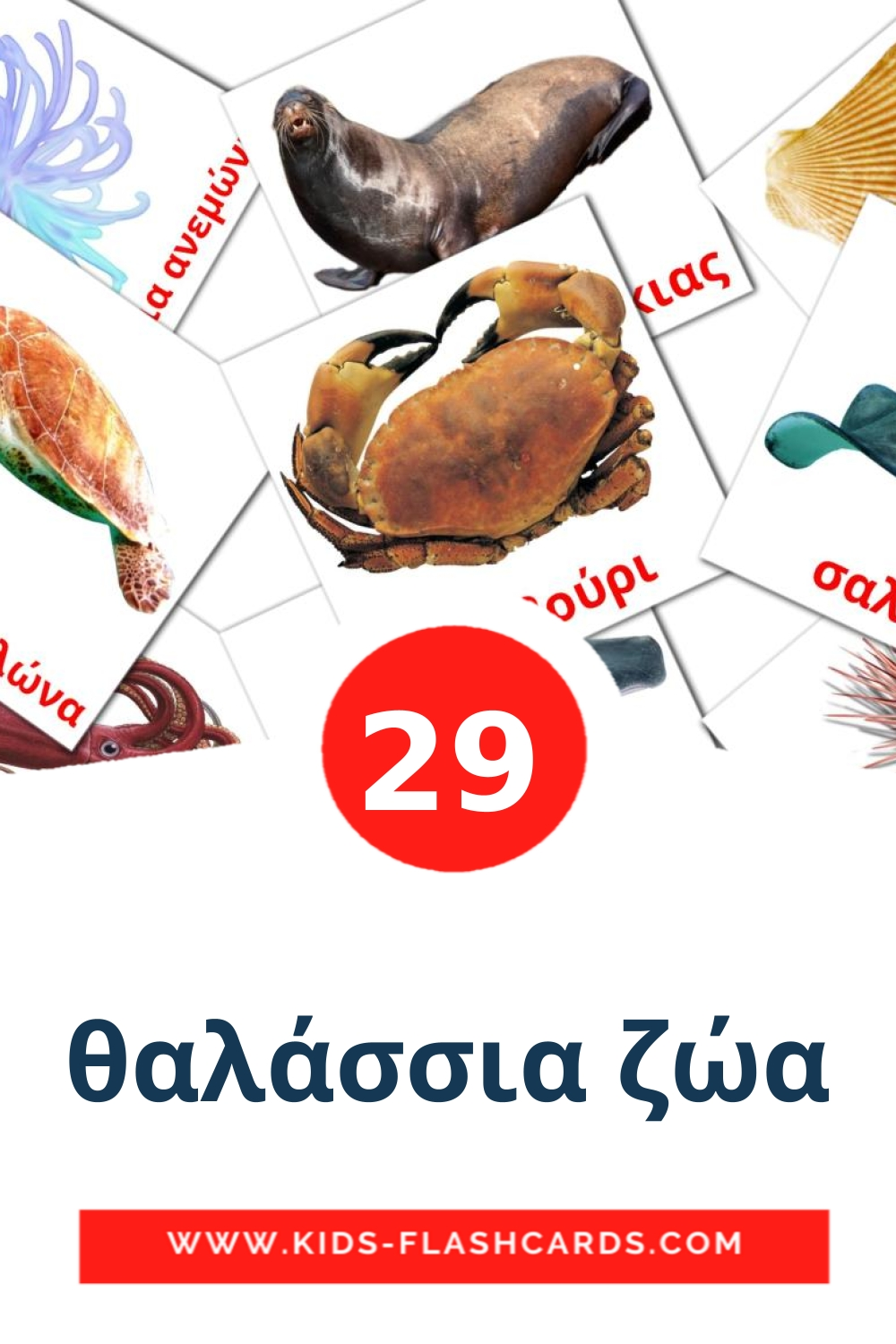 29 θαλάσσια ζώα Picture Cards for Kindergarden in greek