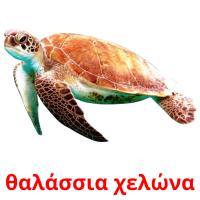 θαλάσσια χελώνα picture flashcards