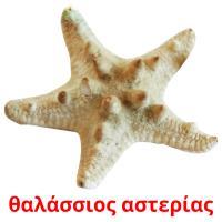 θαλάσσιος αστερίας picture flashcards