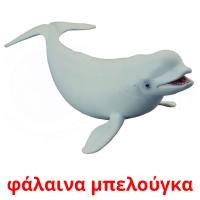φάλαινα μπελούγκα picture flashcards
