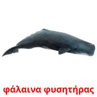 φάλαινα φυσητήρας picture flashcards