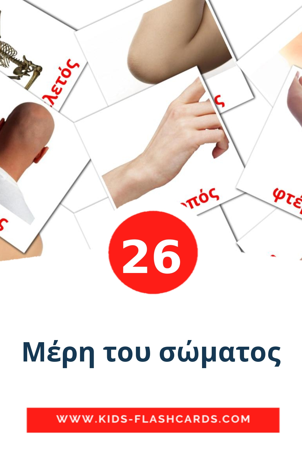 26 Μέρη του σώματος Picture Cards for Kindergarden in greek