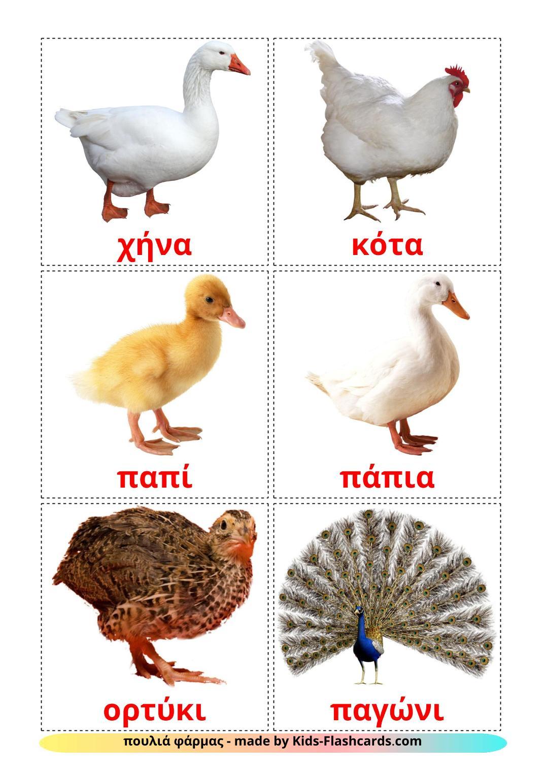 Farm birds - 11 Free Printable greek Flashcards