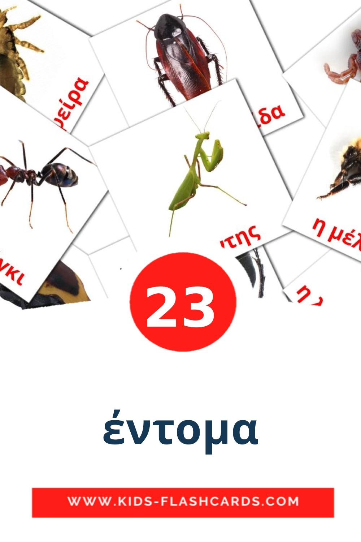 23 έντομα Picture Cards for Kindergarden in greek