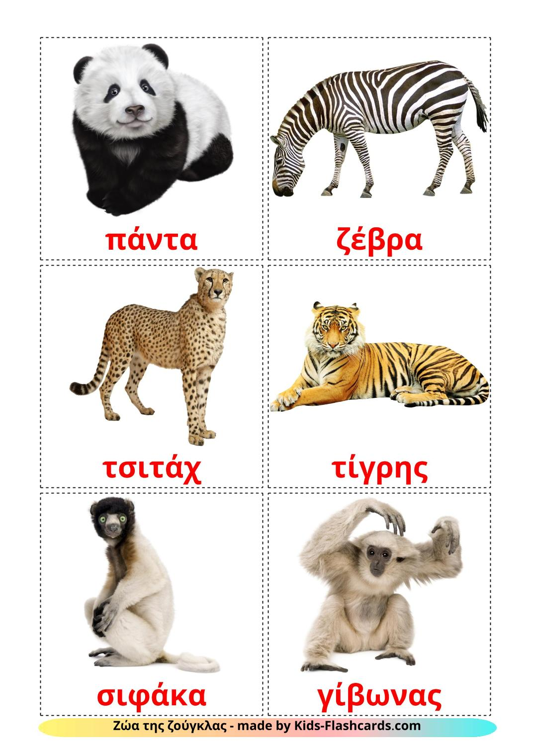 Jungle animals - 21 Free Printable greek Flashcards
