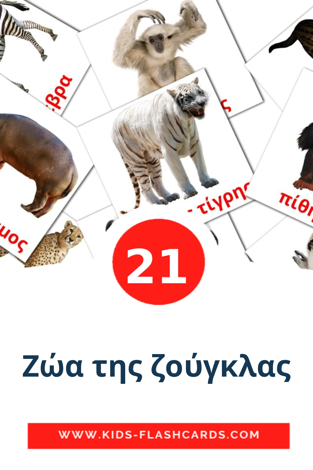 21 Ζώα της ζούγκλας Picture Cards for Kindergarden in greek