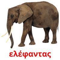ελέφαντας picture flashcards