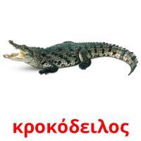 κροκόδειλος picture flashcards