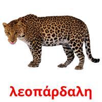 λεοπάρδαλη picture flashcards